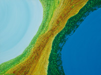 lake and ocean kimberley aerial landscape painting art